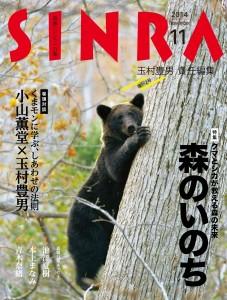 SINRA 2014年11月号_0908